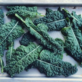 Quick Kale Chips