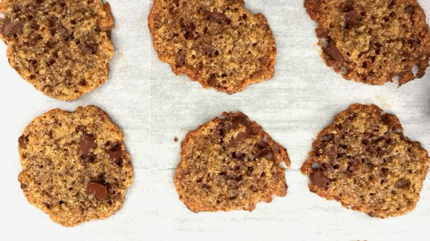 The Return of The Blog! and Unbelievably Delicious Vegan,Gluten free, Chocolate chip Cookies….yes, you heard me.
